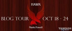 Hawk-Banner-300x130